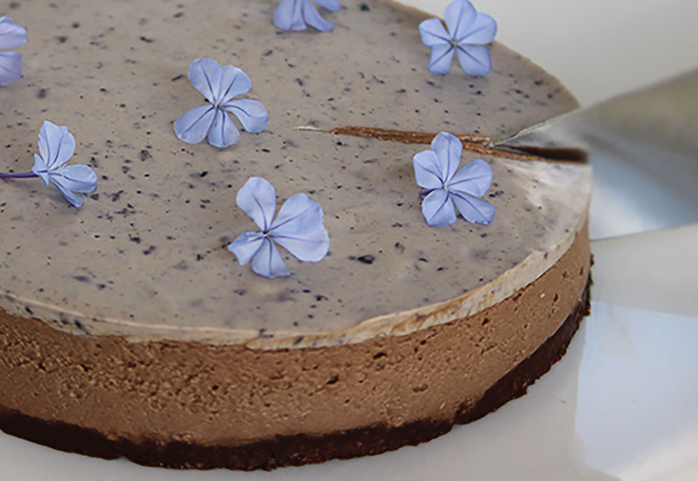 paleo-double-chocolate-and-blueberry-cheesecake-2